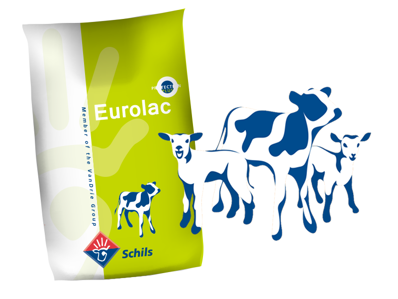 Buzağı Maması (Eurolac Green)